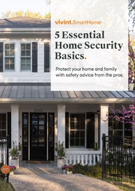 5 Essential Security Basics Ebook